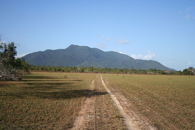 Rupununi Savannah